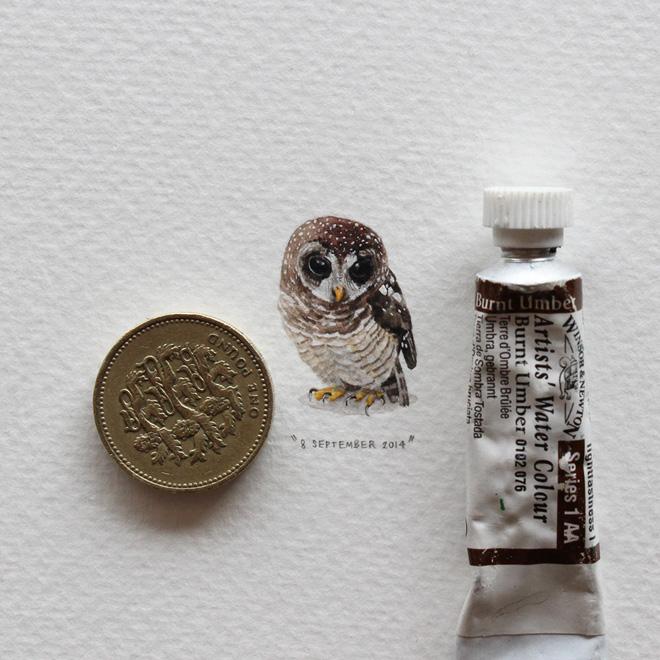 karincalar-icin-365-kartpostal-artmanik5