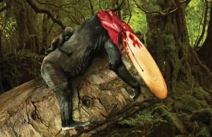 sanctuary-asia-orman-katliamlari-ve-etkileri-artmanik-1