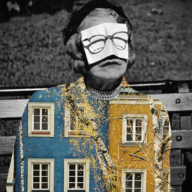 dogal-davranislar-uzerine-vintage-kolajlar-artmanik-11