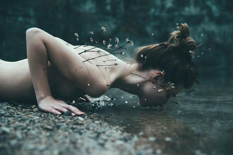 la-faune-et-la-flore-serisi-ile-ruya-gibi-siirsel-fotograflar-artmanik-1