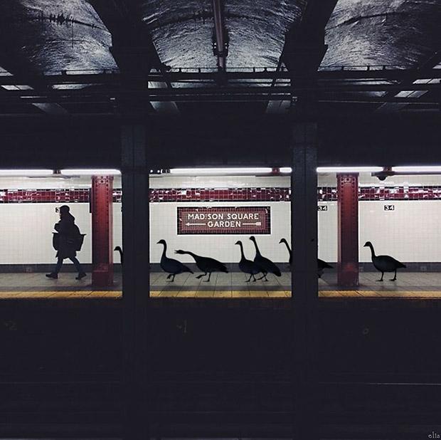 new-york-fotograflarina-cizilen-esprili-illustrasyonlar-artmanik-10