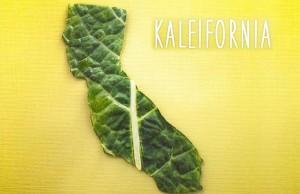 birlesmis-devletlerin-lezzet-haritasi-foodnited-states-artmanik-ft